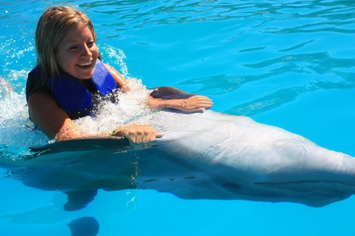 dolphin swim 2010_1