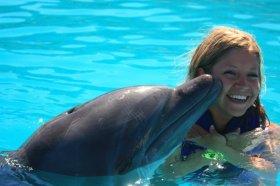 dolphin swim 2010_3